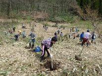 第3回「植樹祭」花いっぱいの森を作ろう!